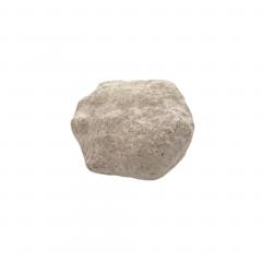 Asteroid 1kg